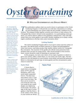 Oyster Gardening - Maryland Sea Grant