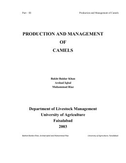 PRODUCTION AND MANAGEMENT OF CAMELS