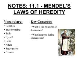 GREGOR MENDEL Answer Key