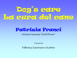 Dog`s care – La cura del cane