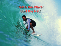 Catch the Wave! Surf the Net!