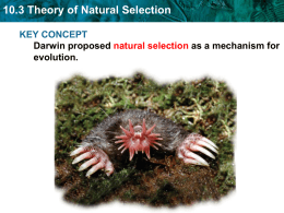 10.3 Theory of Natural Selection