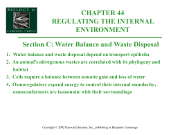 1. Water balance and waste disposal depend on transport epithelia