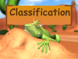 Classification power point