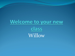 Willow 2013