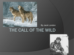 Call of the Wild Background Information Notes
