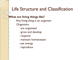 Life Structure and Classification Chpt 8