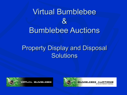 Powerpoint Overview - Bumblebee Auctions
