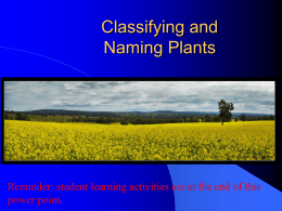 PowerPoint - New Mexico Agricultural Education FFA Association