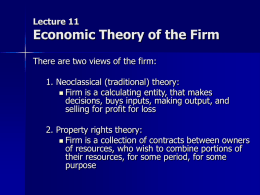 Lecture 11 The firm
