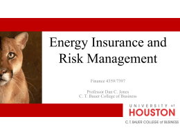Risk Management Can We? - C.T. Bauer College of Business