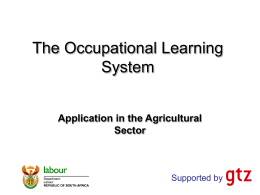 Development of occupational qualifications