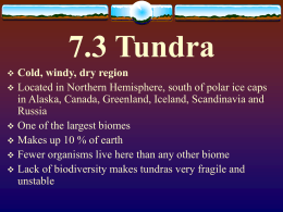 7.3 Tundra