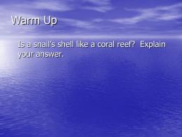 10-1 Mollusks