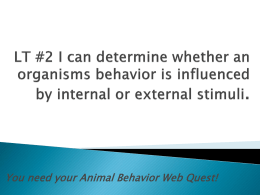 Get out your Animal Behavior WebQuest for LT #2