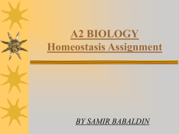 Homeostasis - A level biology