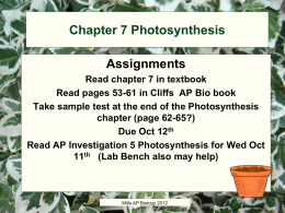 Chapter 7 photosynthesis