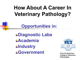 Careers in Academia - American College of Veterinary Pathologists