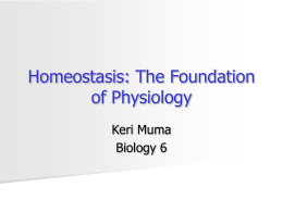 Homeostasis: The Foundation of Physiology