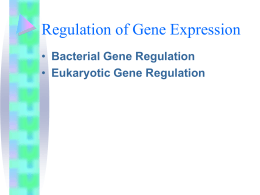 Control of Gene Express in Prokaryotes