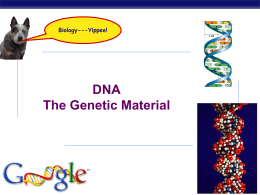 DNA History, Structure and Replication
