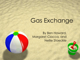 Gas Exchange - ilovebiology
