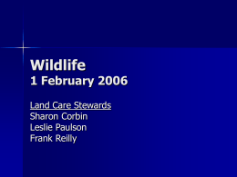 Wildlife 1 February 2006 - Advanced Master Gardener