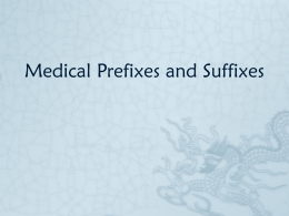 Medical Prefixes and Suffixes