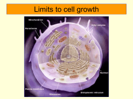 Limits to cell growth - Sonoma Valley High School
