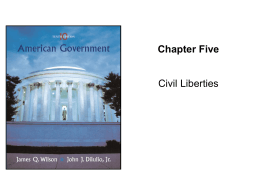 American Government, Chapter 5