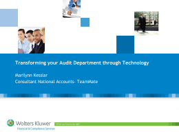 Areas of Efficiency in Audit Reporting