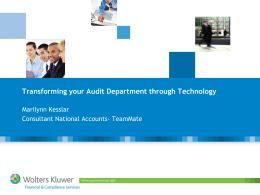 Areas of Efficiency in Audit Reporting