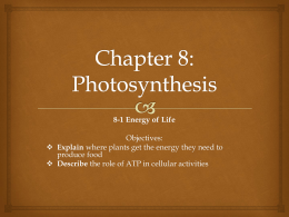 Chapter 8 Section 1 Energy and Life PowerPoint