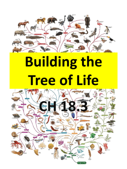 Building the Tree of Life