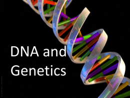 Genes and Heredity 2015