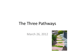 The 3 Pathways - Healthy and Wise