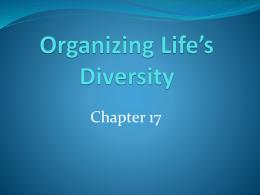 Organizing Life`s Diversity
