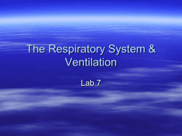SPIROMETRY * RESPIRATORY VOLUMES AND CAPACITIES