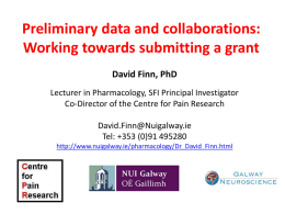 Preliminary data and collaborations: Working towards submitting a