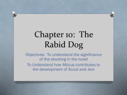 Chapter 10: The Rabid Dog
