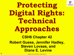 Protecting Digital Rights: Technical Approaches