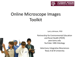 Online Microscope Images Toolkit