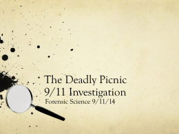 The Deadly Picnic 9/11 Investigation