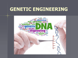 Worksheet 12.1: restriction maps for DNA Goes to the Races