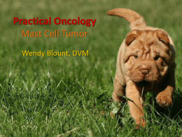 Mast Cell Tumor - WendyBlount.com