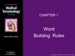 chapter 01 word building rules