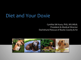 Diet and Your Doxie - Dachshund Rescue of Bucks County