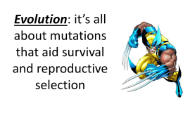 Gene pool and evolution PPT