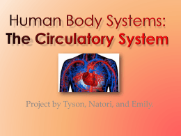 Human Body Systems: The Circulatory System