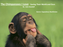 Chimpanzees I Love, Jane Goodall powerpoint.ppt